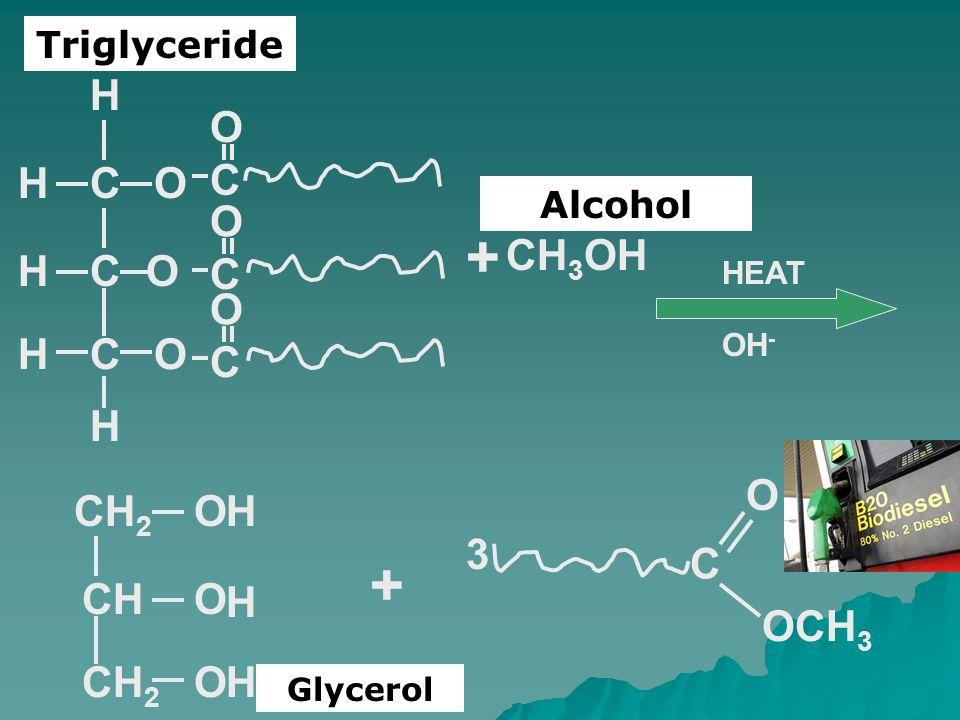 Triglyceride Alcohol HEAT COH CO OCH H H H C O C O C O CH 3 OH + CHO CH 2 O O H H H + C OCH 3 O 3 OH - Glycerol