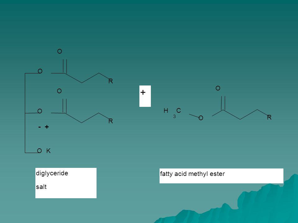 - + OK O O R O O R O R O CH 3 fatty acid methyl ester + diglyceride salt