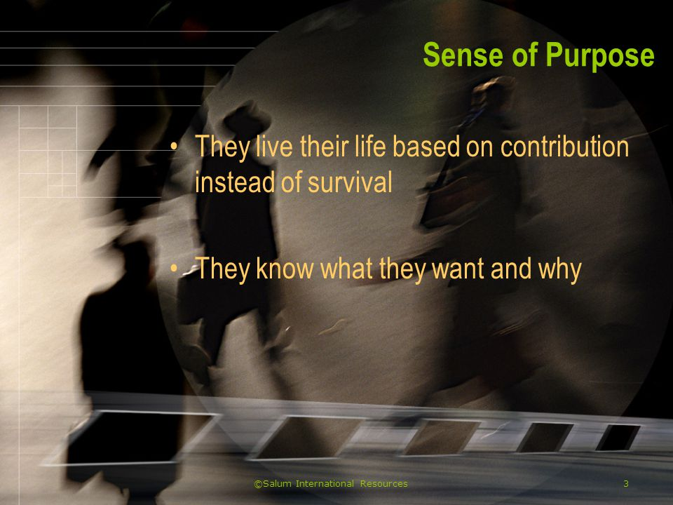 ©Salum International Resources3 Sense of Purpose They live their life based on contribution instead of survival They know what they want and why