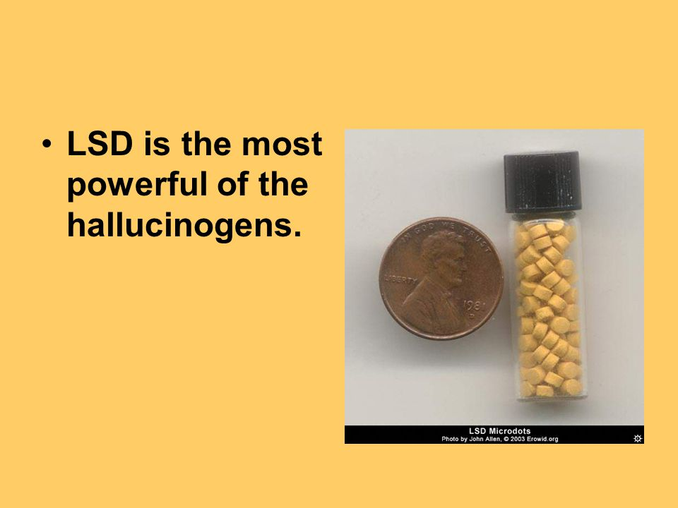 LSD is the most powerful of the hallucinogens.