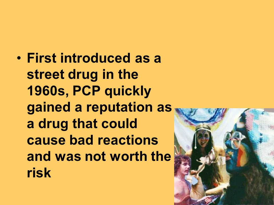 First introduced as a street drug in the 1960s, PCP quickly gained a reputation as a drug that could cause bad reactions and was not worth the risk