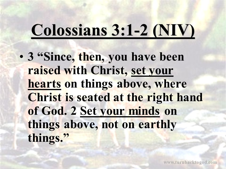 "Colossians 3:1-2 (NIV) 3 ""Since, then, you have been raised with Christ, set your hearts on things above, where Christ is seated at the right hand of"