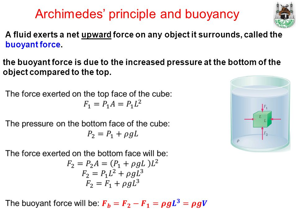 Archimedes' principle and buoyancy A fluid exerts a net upward force on any object it surrounds, called the buoyant force.