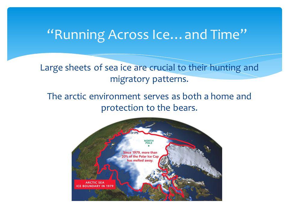 DecliningStableIncreasingData deficient Baffin BayN.