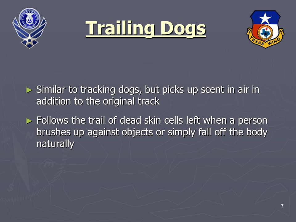 7 Trailing Dogs ► Similar to tracking dogs, but picks up scent in air in addition to the original track ► Follows the trail of dead skin cells left when a person brushes up against objects or simply fall off the body naturally