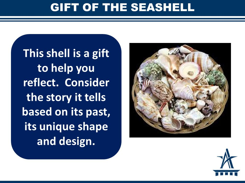 GIFT OF THE SEASHELL This shell is a gift to help you reflect. Consider the story it tells based on its past, its unique shape and design.