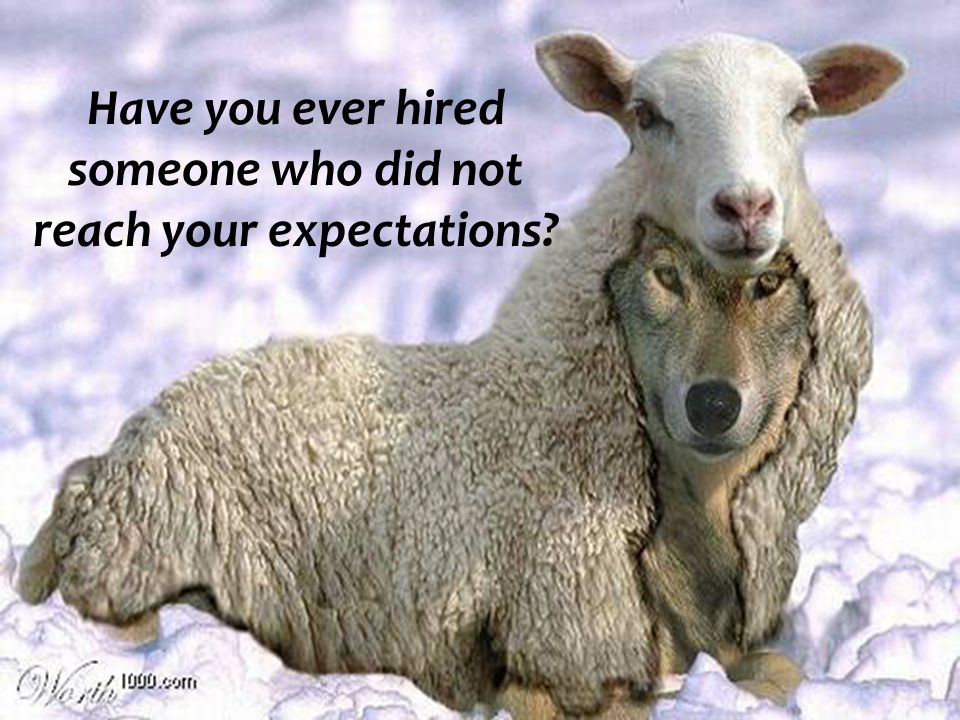 Have you ever hired someone who did not reach your expectations?