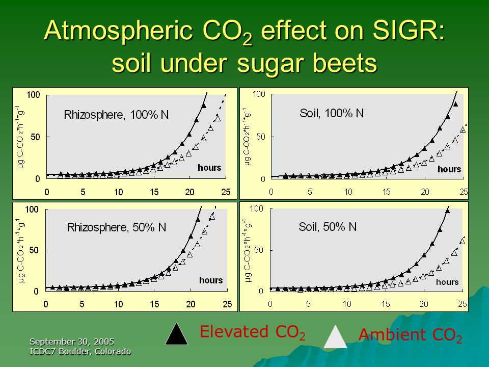 September 30, 2005 ICDC7 Boulder, Colorado Atmospheric CO 2 effect on SIGR: soil under sugar beets Elevated CO 2 Ambient CO 2