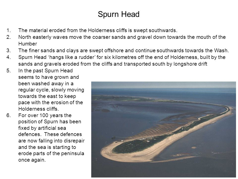 Spurn Head 1.The material eroded from the Holderness cliffs is swept southwards. 2.North easterly waves move the coarser sands and gravel down towards