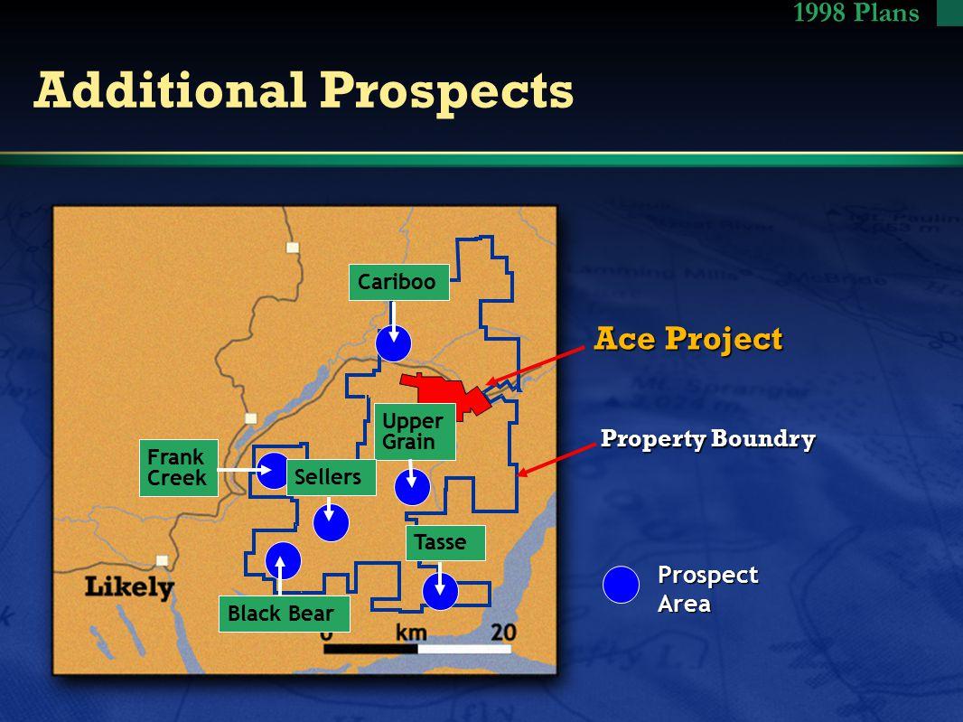 Additional Prospects Property Boundry Ace Project ProspectArea Frank Creek CaribooUpper Grain Black Bear TasseSellers 1998 Plans