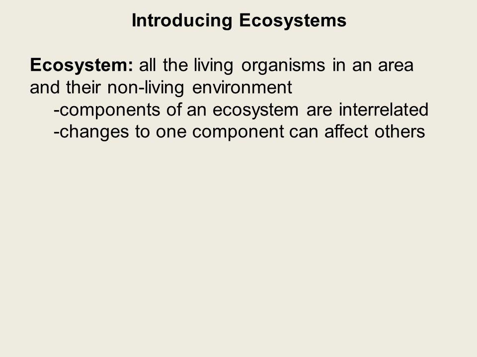 Introducing Ecosystems Biotic or Abiotic.1. boulder-abiotic 2.