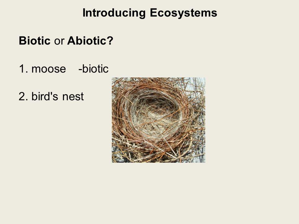 Introducing Ecosystems Biotic or Abiotic? 1. moose-biotic 2. bird s nest-biotic