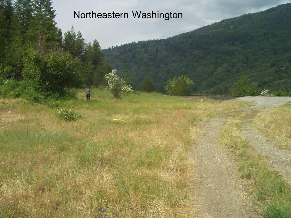 Northeastern Washington