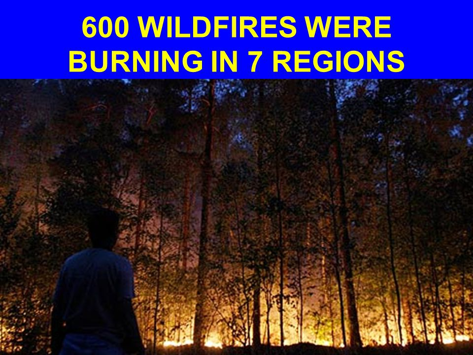 600 WILDFIRES WERE BURNING IN 7 REGIONS