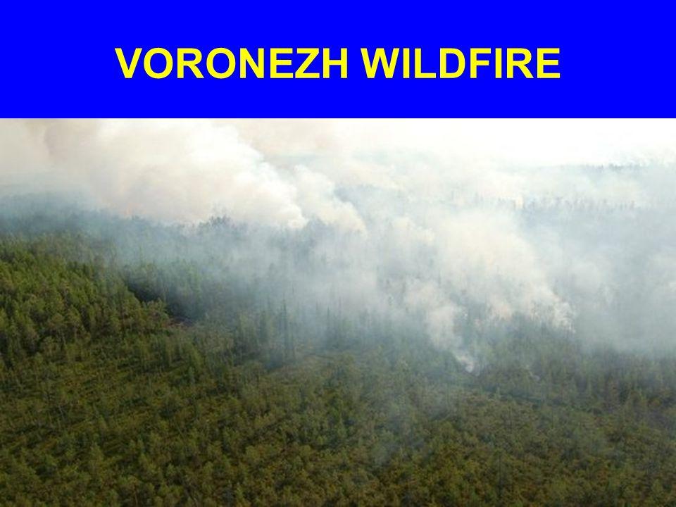 VORONEZH WILDFIRE