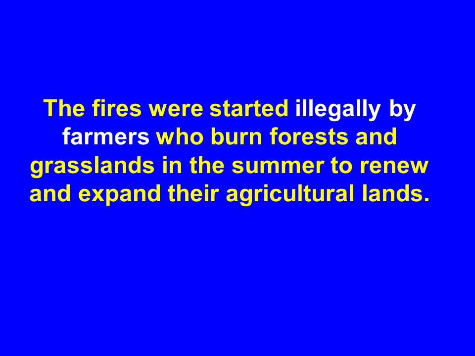 The fires were started illegally by farmers who burn forests and grasslands in the summer to renew and expand their agricultural lands.