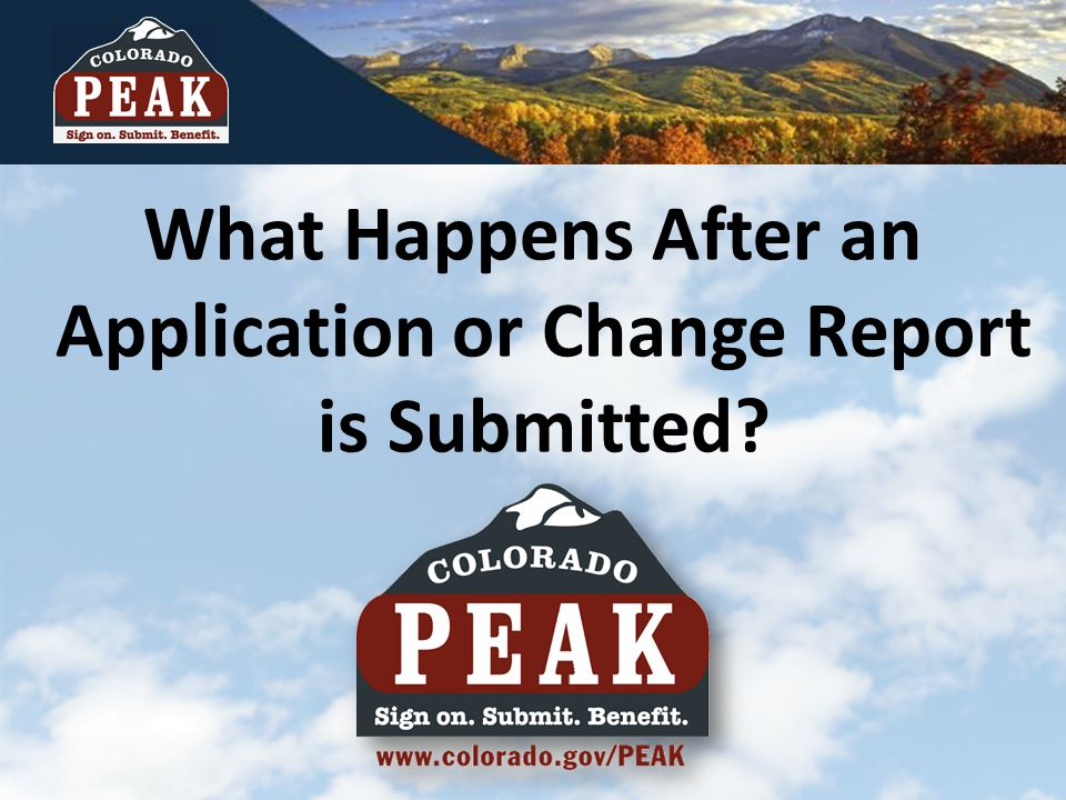 What Happens After an Application or Change Report is Submitted