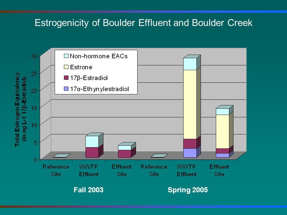 Estrogenicity of Boulder Effluent and Boulder Creek Fall 2003 Spring 2005