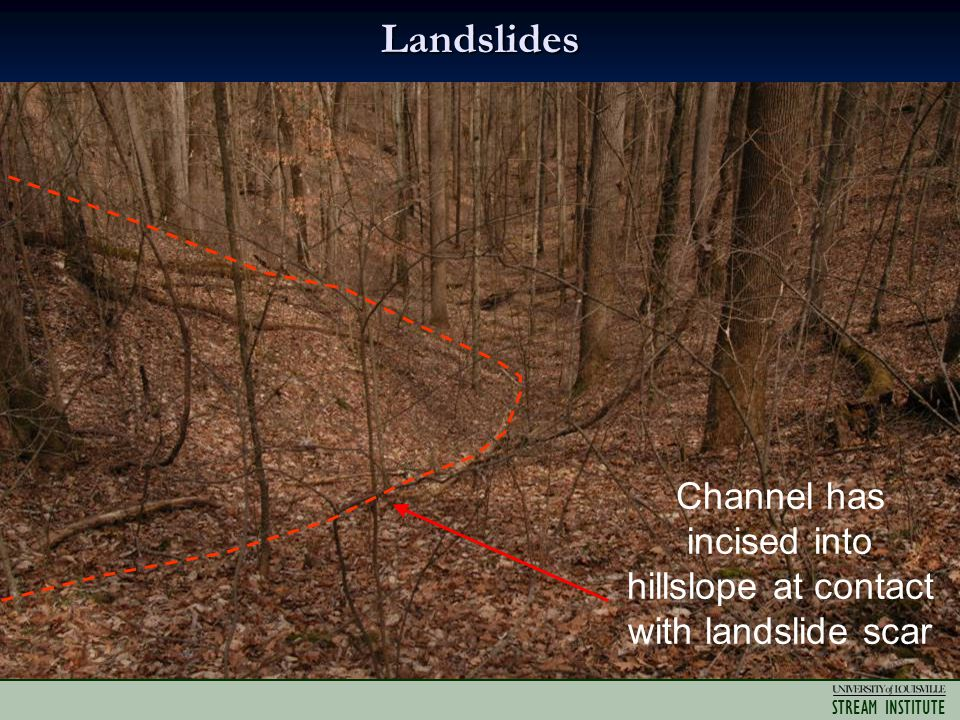 STREAM INSTITUTE Landslides Channel has incised into hillslope at contact with landslide scar