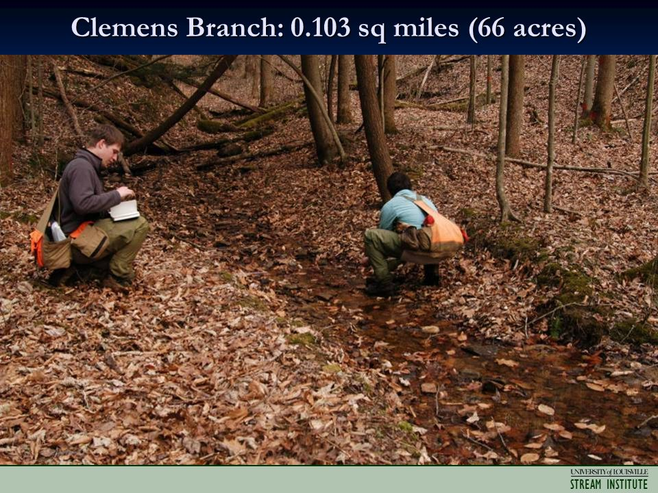STREAM INSTITUTE Clemens Branch: 0.103 sq miles (66 acres)