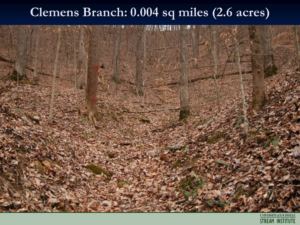 STREAM INSTITUTE Clemens Branch: 0.004 sq miles (2.6 acres)