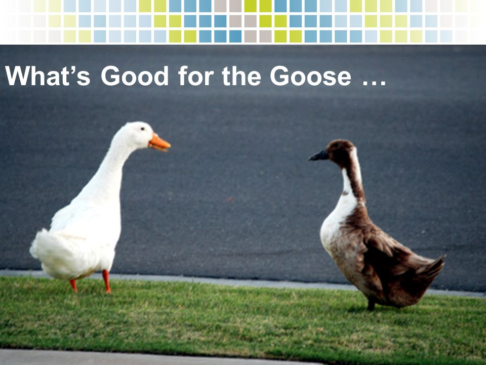 What's Good for the Goose …