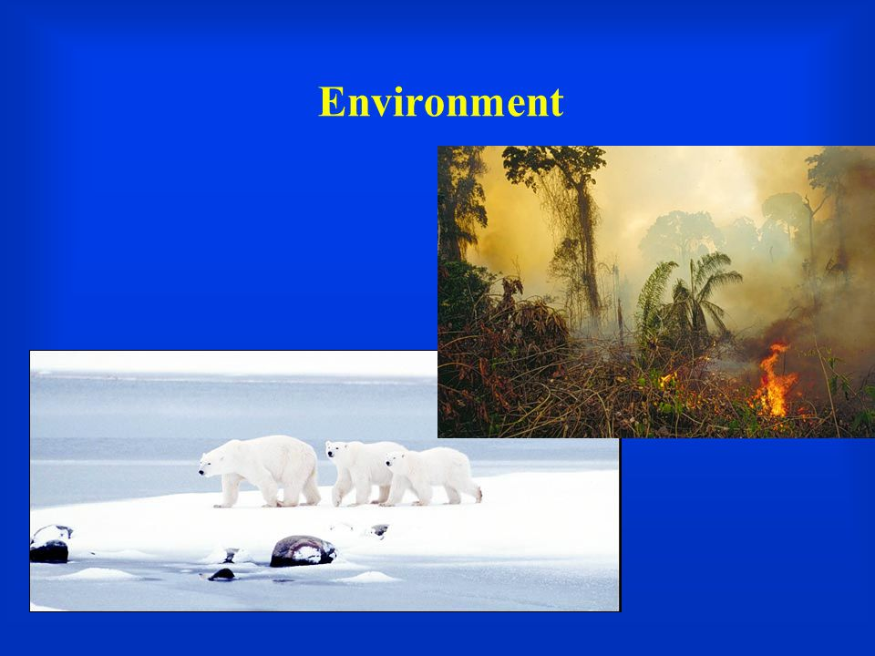 The Climate Problem  Natural greenhouse effect, augmented by human activity  Anthropogenic emissions of CO2, NOx, methane and other green house gases (GHGs).