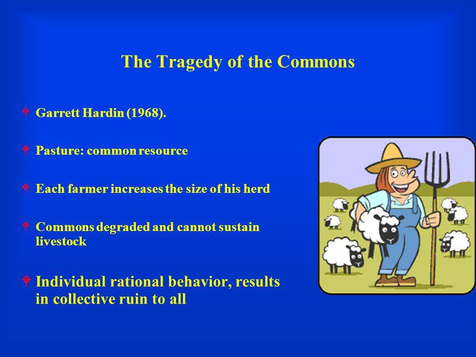The Tragedy of the Commons  Garrett Hardin (1968).