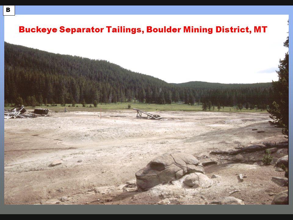 Buckeye tailings B Buckeye Separator Tailings, Boulder Mining District, MT
