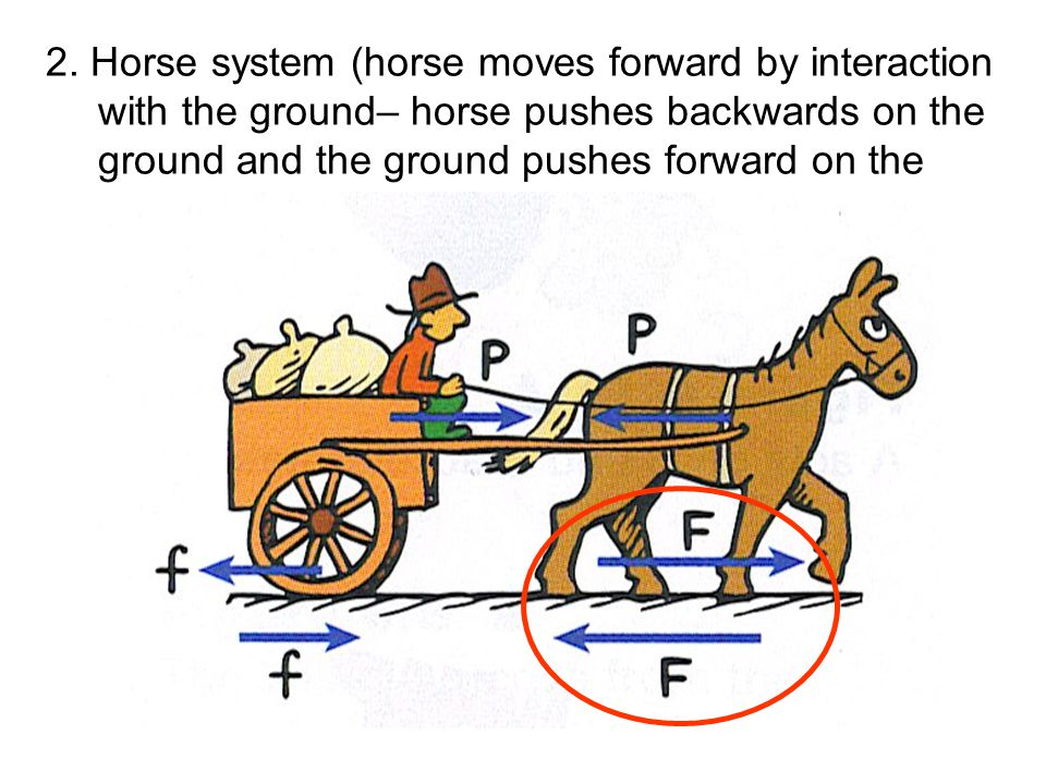 2. Horse system (horse moves forward by interaction with the ground– horse pushes backwards on the ground and the ground pushes forward on the horse