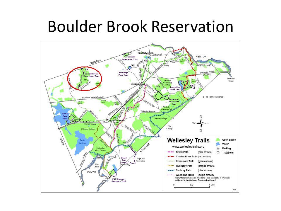 Boulder Brook Reservation