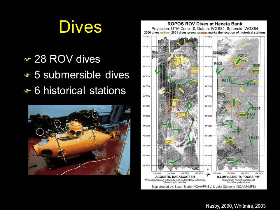 Dives  28 ROV dives  5 submersible dives  6 historical stations Nasby, 2000; Whitmire, 2003