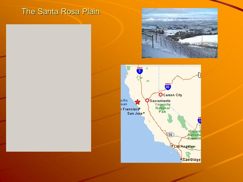 The Santa Rosa Plain