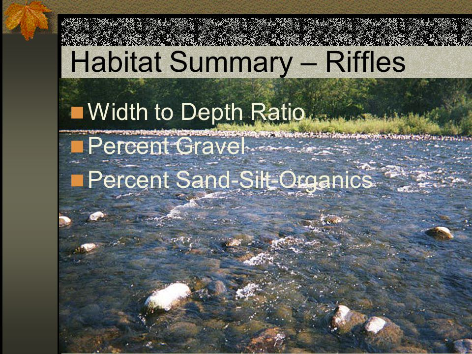 Riffle – Width to Depth Width / Depth = 5 / 0.5 = 10 Pool Riffle W = 5', D = 0.5' Habitat Benchmarks UndesirableBetweenDesirable Width to Depth > 3015 - 30< 15