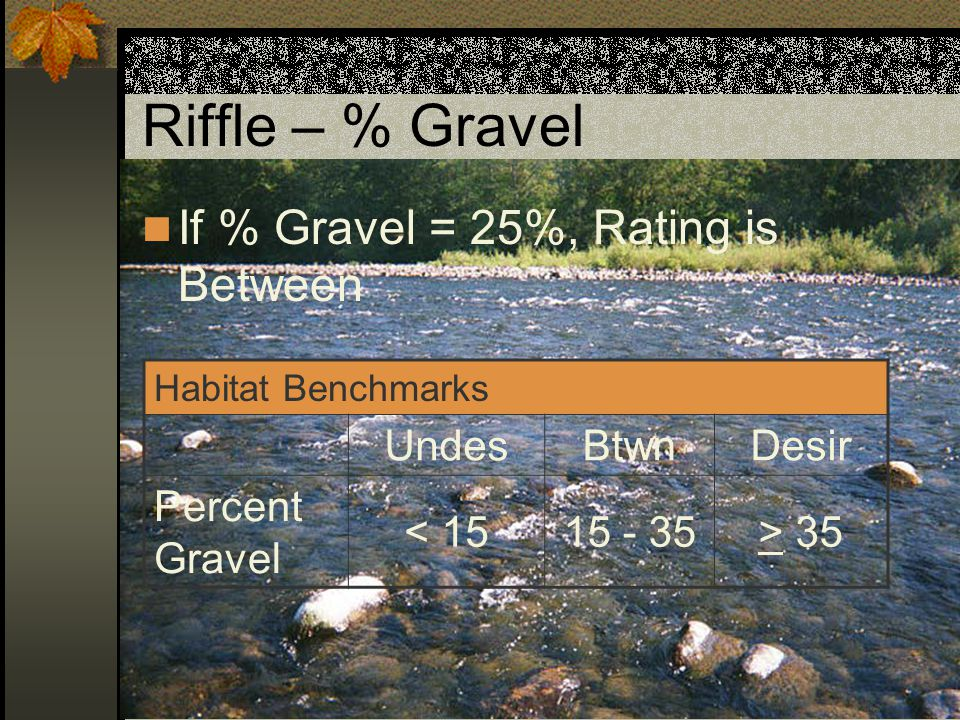 Riffle – % Sand-Silt-Organics If % Sand-Silt-Organics = 10%, Rating is Between Habitat Benchmarks UndesBtwnDesir Percent Sand-Silt- Organics > 158 - 15< 8 Values for streams with Volcanic Parent Material