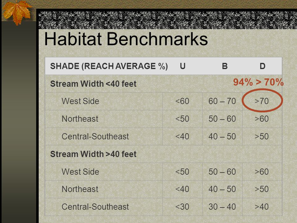 Habitat Benchmarks SHADE (REACH AVERAGE %) U B D Stream Width <40 feet West Side<6060 – 70>70 Northeast<5050 – 60>60 Central-Southeast<4040 – 50>50 St