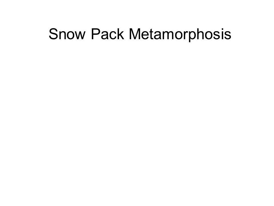 Snow Pack Metamorphosis