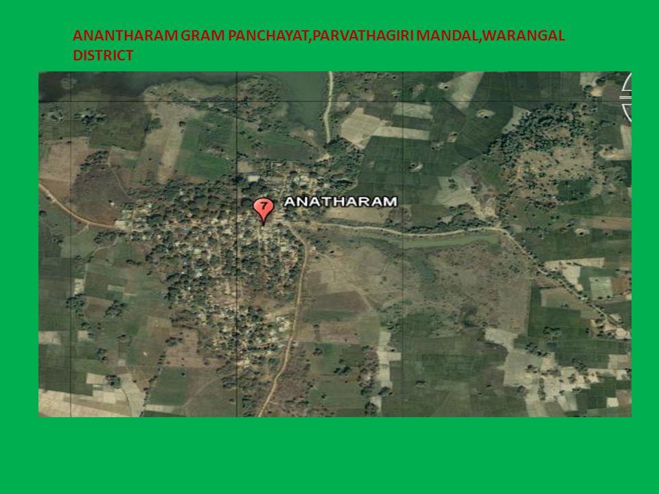 ANANTHARAM GRAM PANCHAYAT,PARVATHAGIRI MANDAL,WARANGAL DISTRICT
