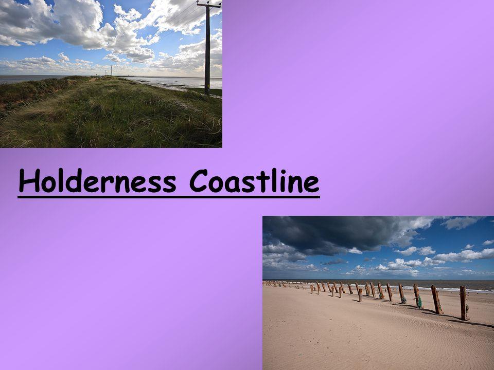 Holderness Coastline