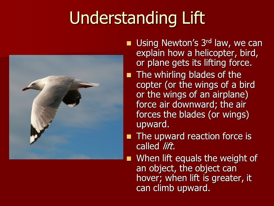 Understanding Lift Using Newton's 3 rd law, we can explain how a helicopter, bird, or plane gets its lifting force.