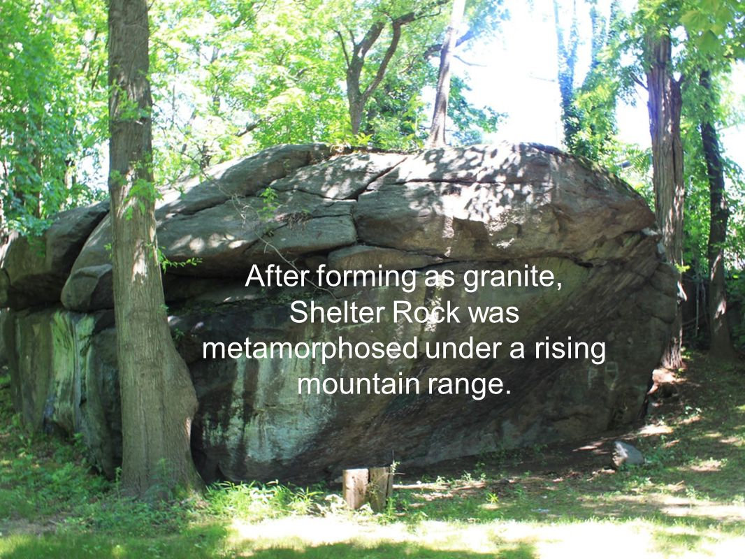 After forming as granite, Shelter Rock was metamorphosed under a rising mountain range.