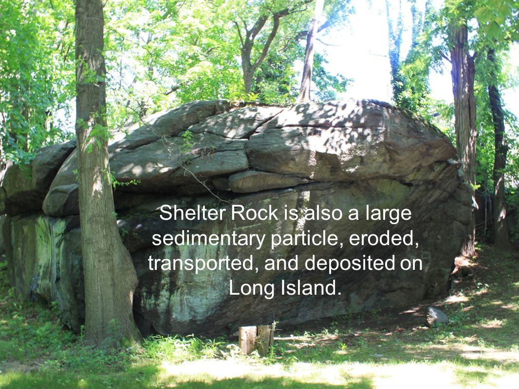 Shelter Rock is also a large sedimentary particle, eroded, transported, and deposited on Long Island.