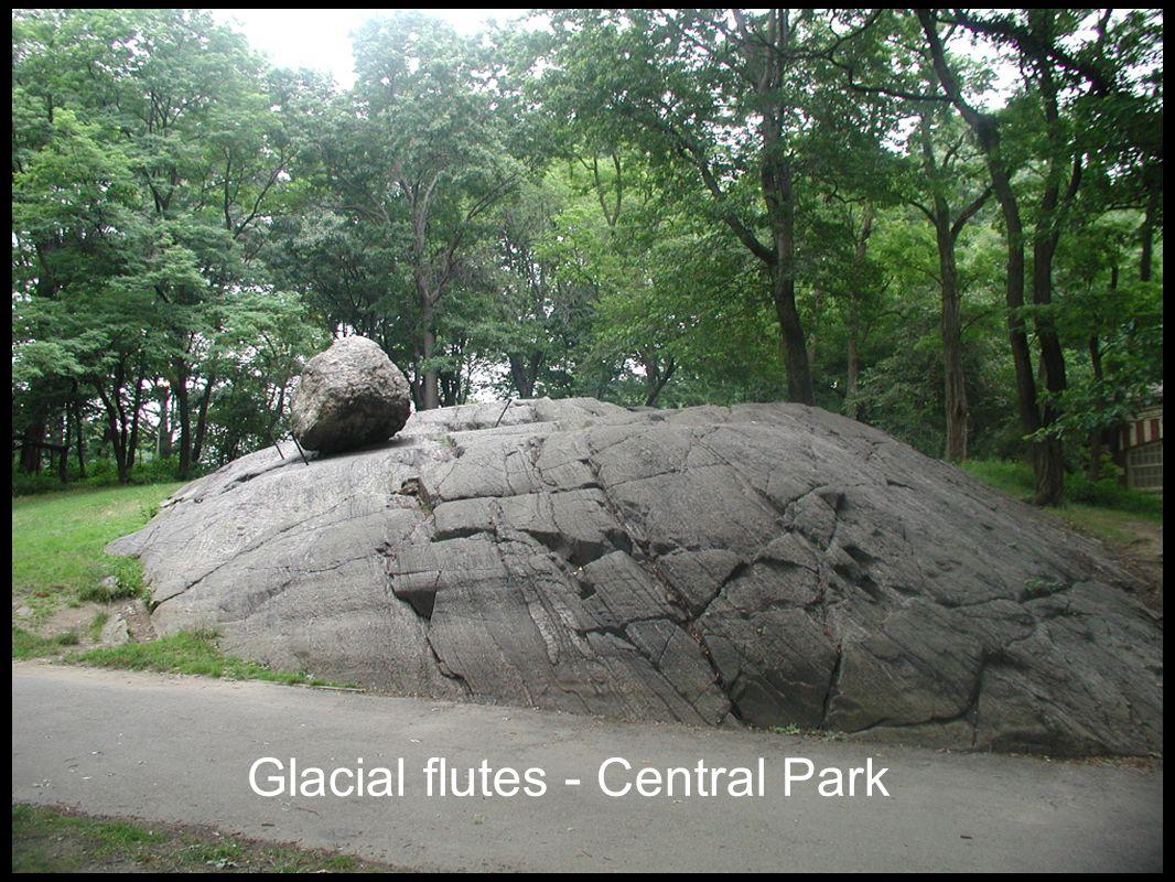 Glacial flutes - Central Park