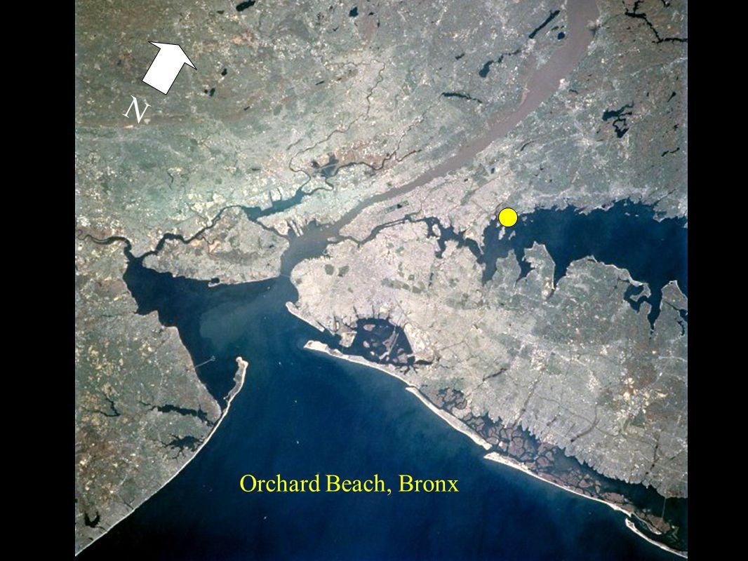 Orchard Beach, Bronx N