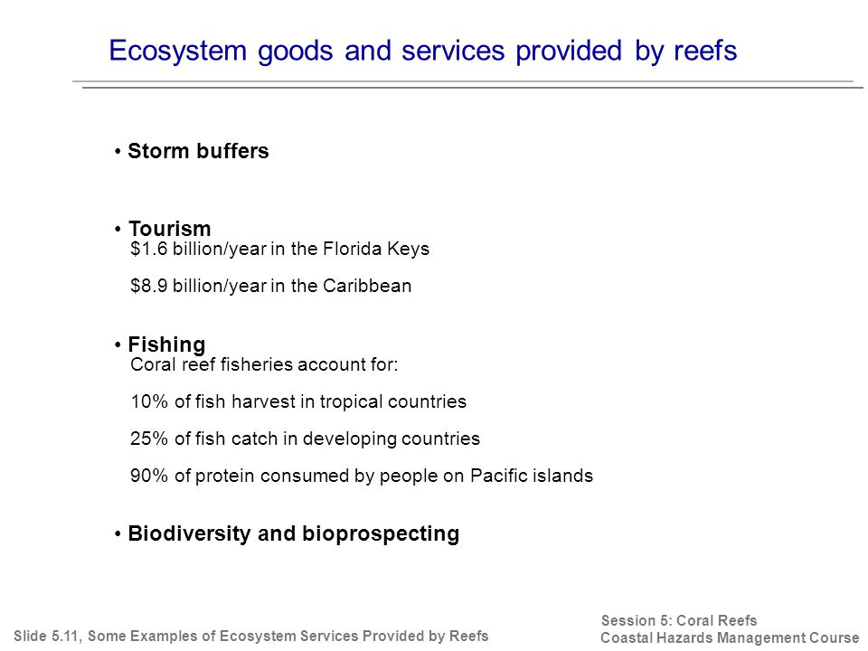 Ecosystem goods and services provided by reefs Session 5: Coral Reefs Coastal Hazards Management Course Storm buffers Tourism $1.6 billion/year in the Florida Keys $8.9 billion/year in the Caribbean Fishing Coral reef fisheries account for: 10% of fish harvest in tropical countries 25% of fish catch in developing countries 90% of protein consumed by people on Pacific islands Biodiversity and bioprospecting Slide 5.11, Some Examples of Ecosystem Services Provided by Reefs