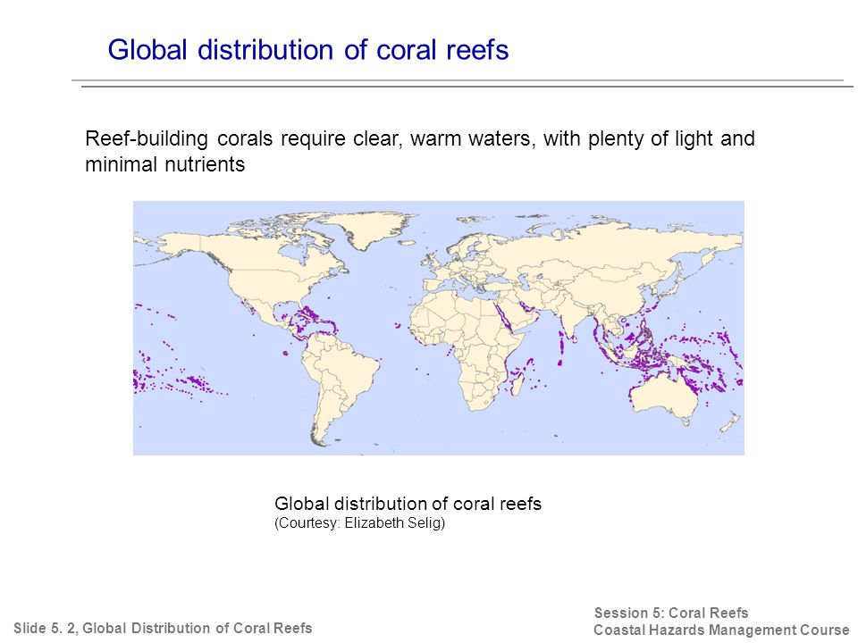 Global distribution of coral reefs Session 5: Coral Reefs Coastal Hazards Management Course Reef-building corals require clear, warm waters, with plenty of light and minimal nutrients Slide 5.