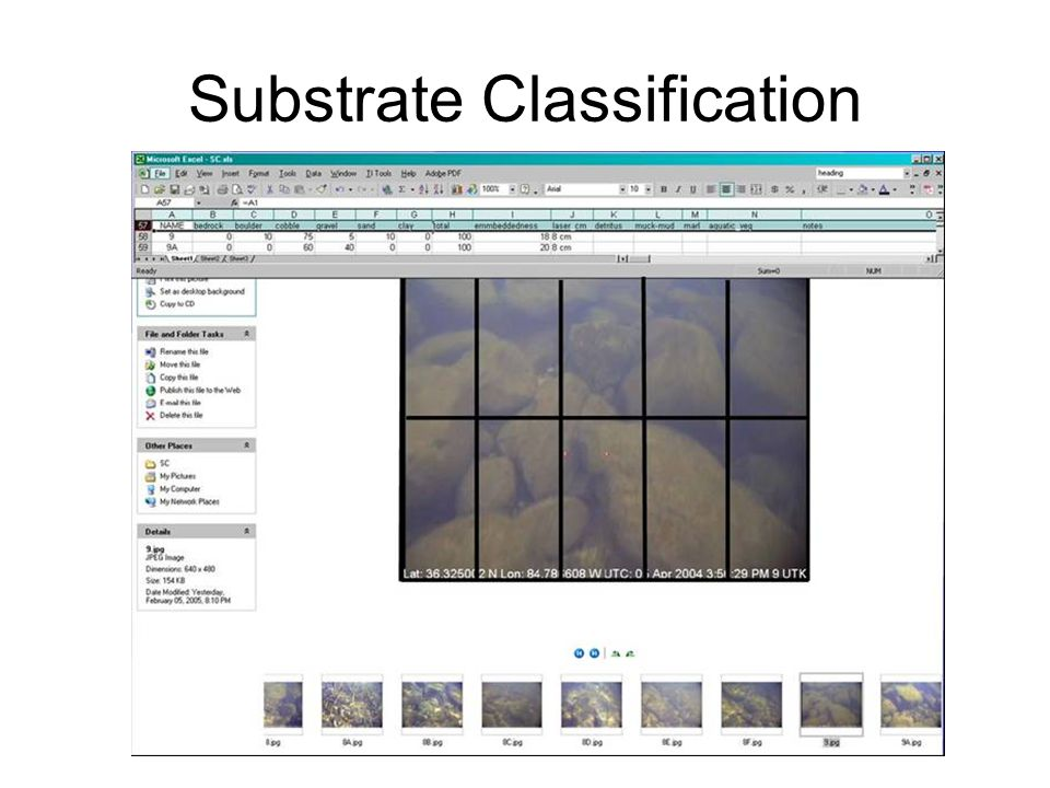 Substrate Classification