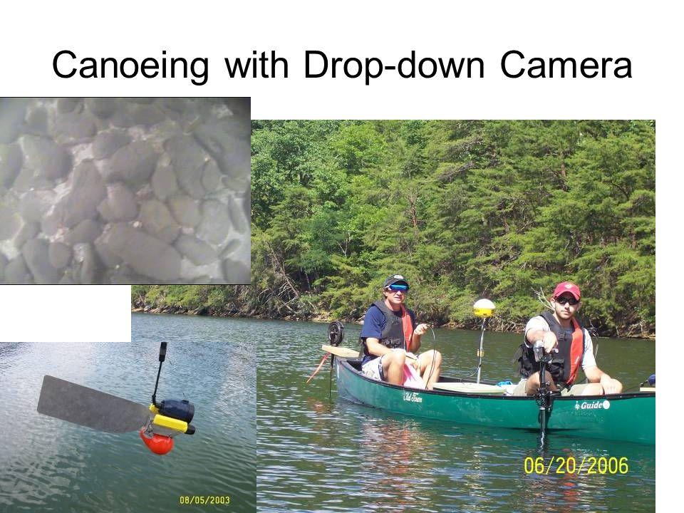 Species at Risk Habitat Maps Rayed Bean (Villosa fabalis) mussel Develop Optimum Habitat Criteria