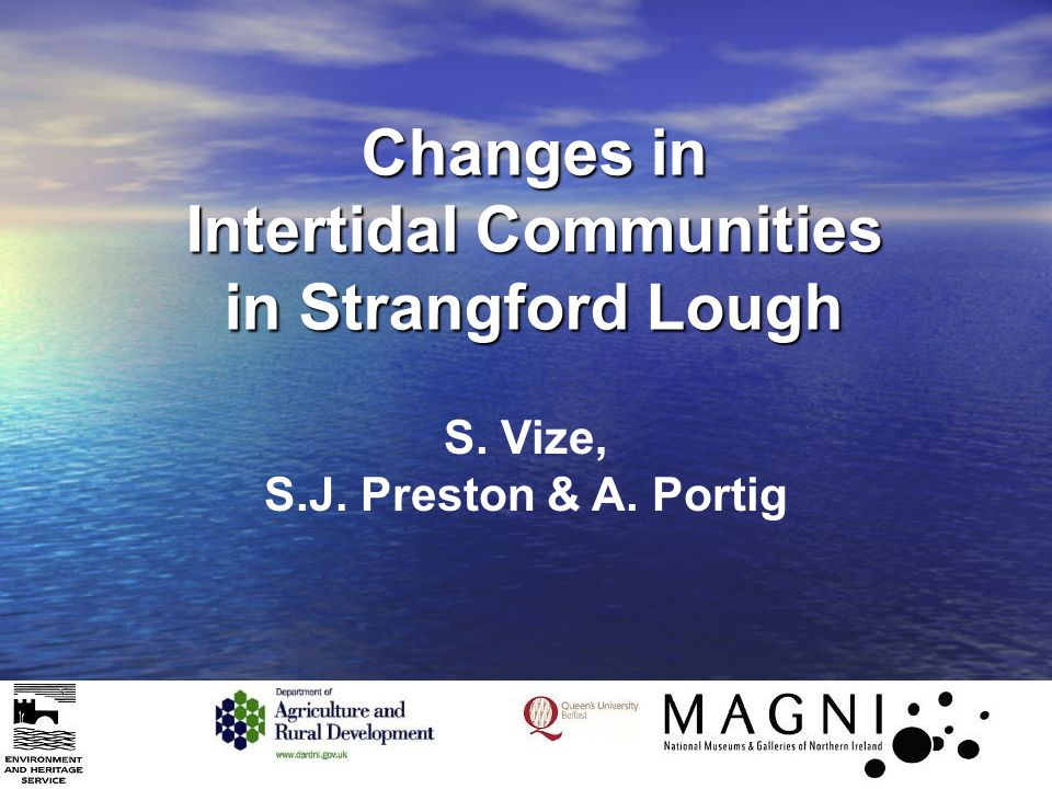 Changes in Intertidal Communities in Strangford Lough S. Vize, S.J. Preston & A. Portig