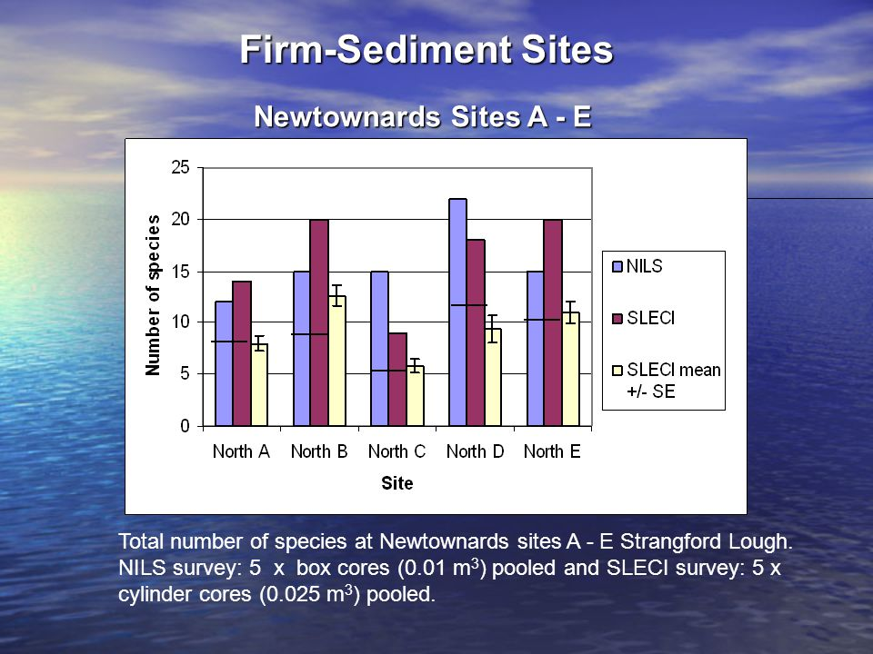 Total number of species at Newtownards sites A - E Strangford Lough.